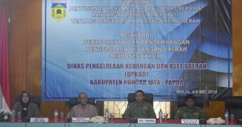 Plh. Sekda, Kepala DPKAD, Kepala PT. Taspen Jayapura dan Pemateri dari UGM